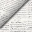 Pliego de papel Notas musicales