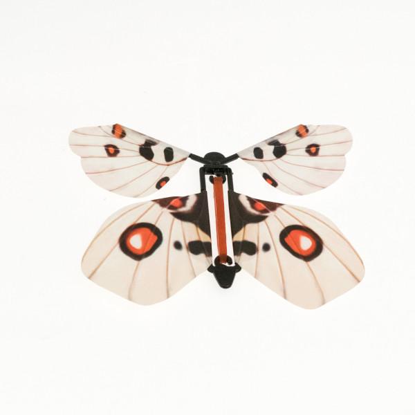 Mariposa mágica